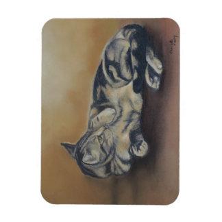 Tabby Tummy Cat Art Magnet