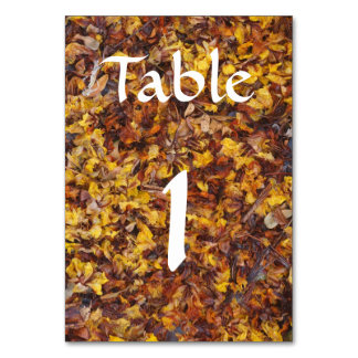 Table card with leaf litter background