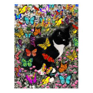 Taches de rousseur dans les papillons - chat de carte postale
