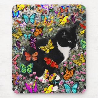 Taches de rousseur dans les papillons - chat de tapis de souris