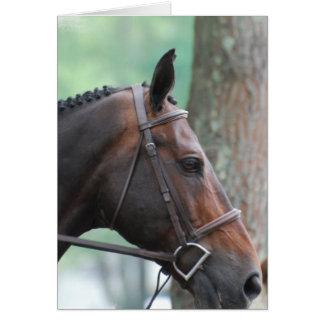 Tacked Dark Bay Horse Greeting Card