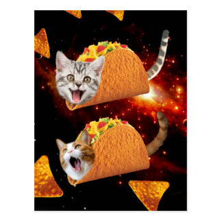 Taco Cats Space Postcard
