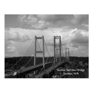 Tacoma Narrows Bridge Postcard