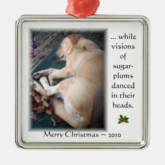Taffy's Christmas Ornament 2010