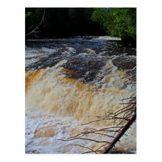 Tahquamenon Lower Falls Postcard