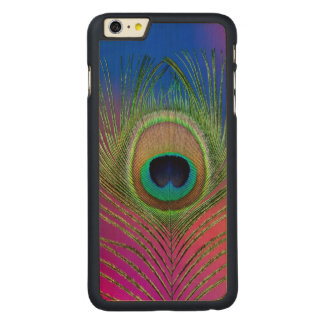 Tail feather of a peacock carved maple iPhone 6 plus case