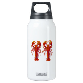 TAIL OF TWO INSULATED WATER BOTTLE