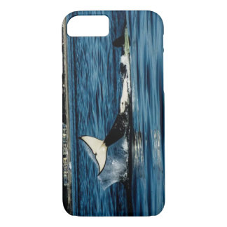 tail slapping killer whale iPhone 7 case
