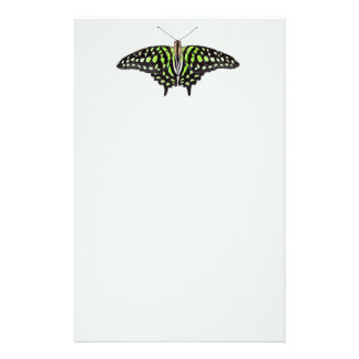 Tailed Jay Green and Black Butterfly Painted Stationery