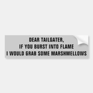 Tailgater, I Would Roast Marshmellows on You Bumper Sticker