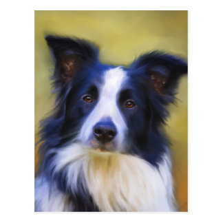 Taj - Border Collie Art Postcard