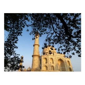 Taj Mahal  at sunrise. Agra, India 2008. Postcard