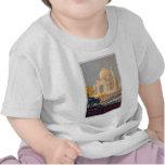 Taj Mahal Infant T-shirt