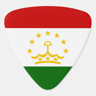 Tajikistan Flag Guitar Pick