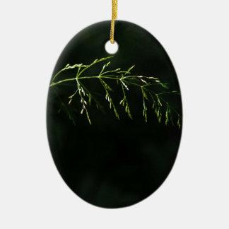 Take a Bow Ceramic Oval Ornament