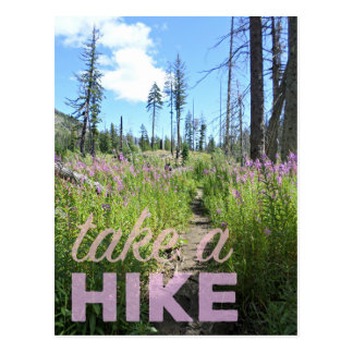 Take a Hike Alpine Lakes Wilderness Postcard