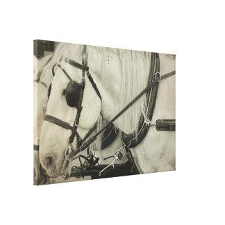 TAKE A TOUR 24 x 16 Canvas Print