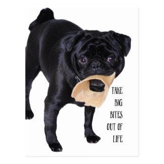Take big bites out of life postcard