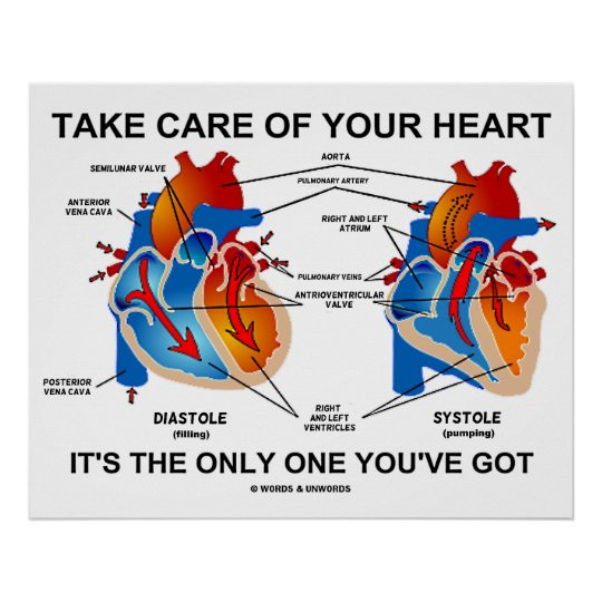 Take Care Of Your Heart It's The Only One You've Poster