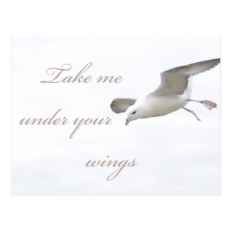 Take Me Under Your Wings Postcard