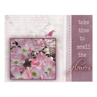 Take time to smell the flowers postcard