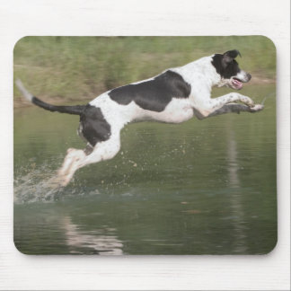 Taking a dive mouse pad