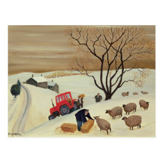 Taking Hay to the Sheep by Tractor Postcard
