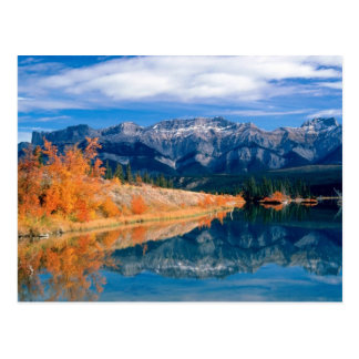 Talbot saumure Jasper Alberta, Canada Cartes Postales