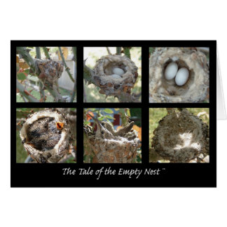 Tale of the Empty Nest Card