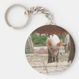 Talented piggy with big future keychain