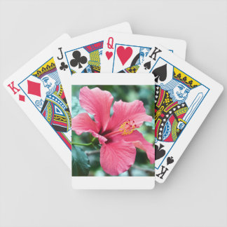 TALK HIBISCUS FLOWER BICYCLE PLAYING CARDS