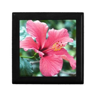TALK HIBISCUS FLOWER GIFT BOX