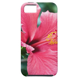 TALK HIBISCUS FLOWER iPhone 5 COVERS