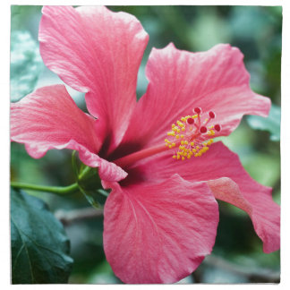 TALK HIBISCUS FLOWER NAPKIN