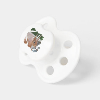 TALK SQUIRREL - Photography Jean Louis Glineur Baby Pacifiers