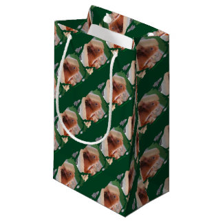 TALK SQUIRREL - Photography Jean Louis Glineur Small Gift Bag