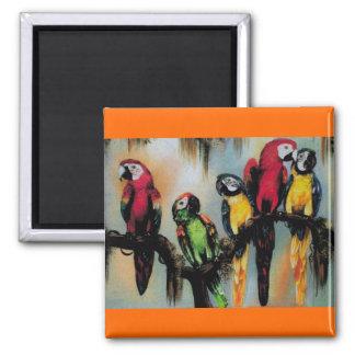Talking Parrots ~ Magnet Bird Animal Nature Me