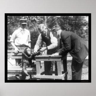 Talking to Orangutan 1920 Poster