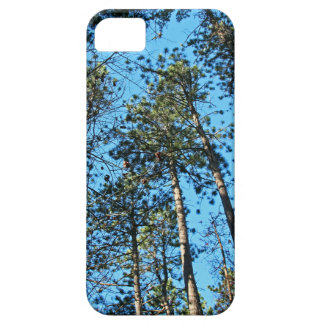 Tall Aspirations iPhone 5 Covers