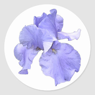 Tall Bearded Purple Iris Round Sticker