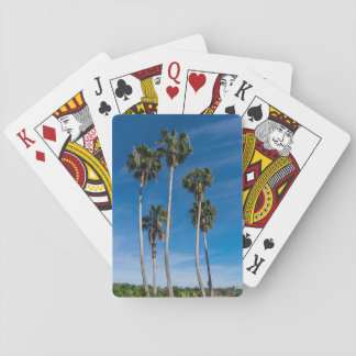 Tall Curving Palms Playing Cards