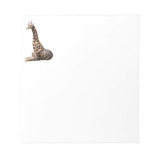 Tall Cute Giraffe Real Animal Photo Notepad