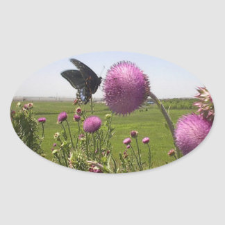 Tall Grass Prairie Butterfly on Violet Thistle Oval Sticker