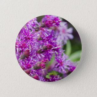 Tall Ironweed Wildflowers 2 Inch Round Button