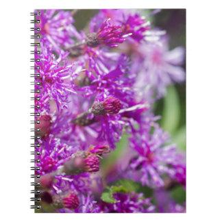 Tall Ironweed Wildflowers Notebooks