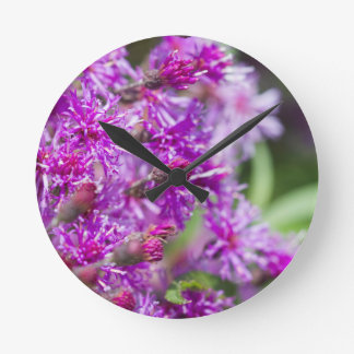 Tall Ironweed Wildflowers Round Clock