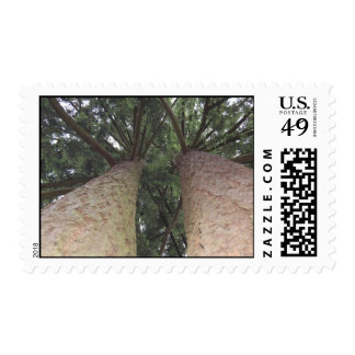Tall ones postage stamps