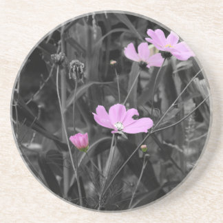 Tall Pink Poppies in the wind Drink Coasters