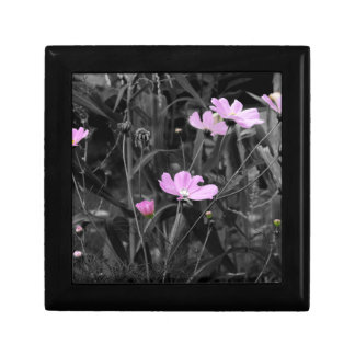 Tall Pink Poppies in the wind Gift Box