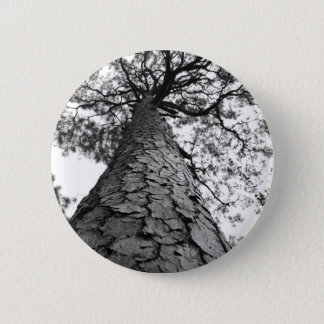 Tall Tree BW 2 Inch Round Button
